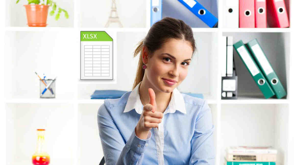 Beginners to Expert Excel and Excel VBA 38 Hours Mega Online Course for health economists