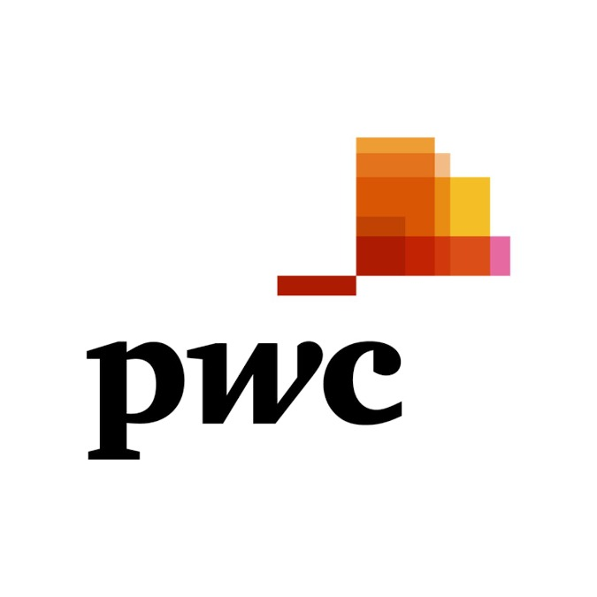 Online Course on Data Analysis and Presentation Skills: The PwC Approach